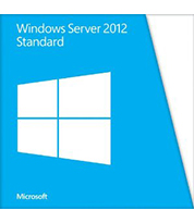 Windows Server Std (싱글) OLP