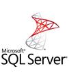 SQL CAL (싱글) OLP