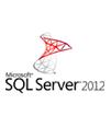 SQL Server Standard Core (싱글) OLP